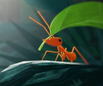 How Art & Graft created this warm, textured animation about a leafcutter ant