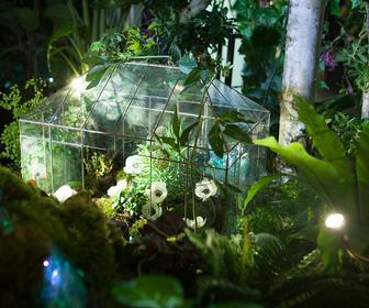 This enchanting garden moves when you move, dances when you dance