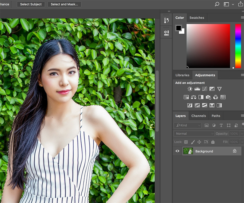 Adobe Photoshop CC update adds Select Subject cutout tool and Microsoft Dial Brush settings support