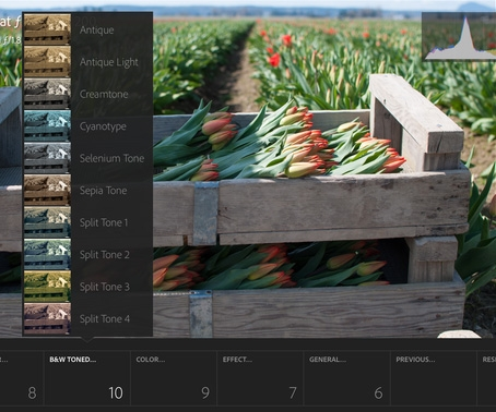 Adobe Lightroom for iPad first look review