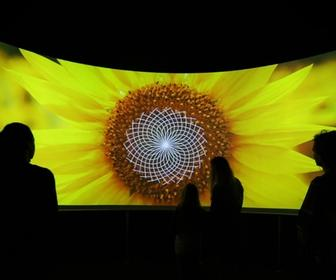 Nature's patterns explained by MSI Chicago's interactive exhibition