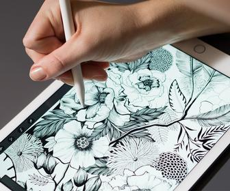 The best iPad stylus for artists & designers