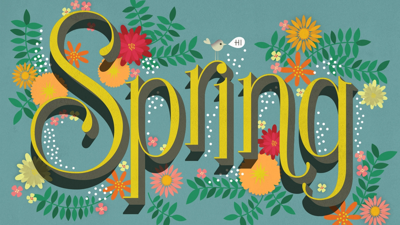 Image result for spring social